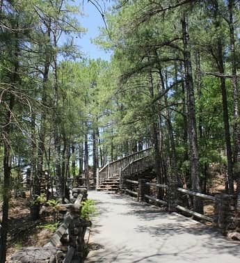 A path in Pinnacle Mountain State Park Arkansas